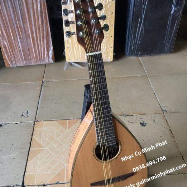 dan-mandolin-cao-cap-gia-re-tai-quan-binh-tan-tphcm