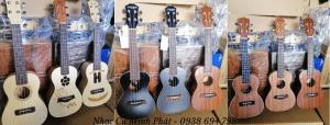 Mua đàn ukulele giá rẻ Quận 12, Hóc Môn, Củ Chi, Gò Vấp 1