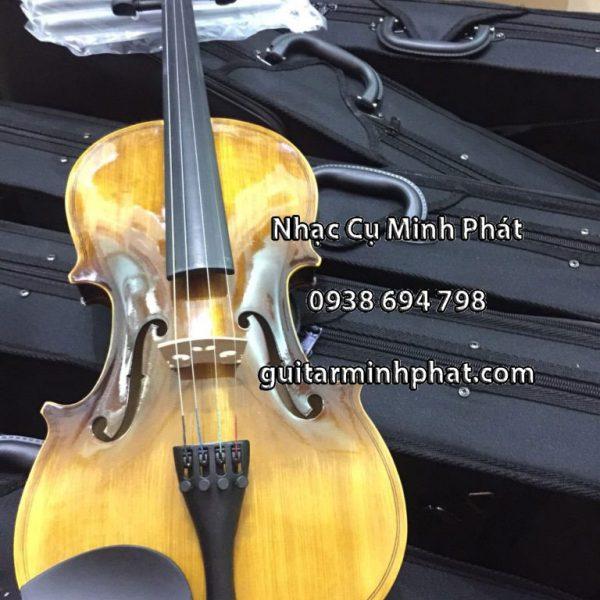 mua-ban-dan-violin-tai-tphcm