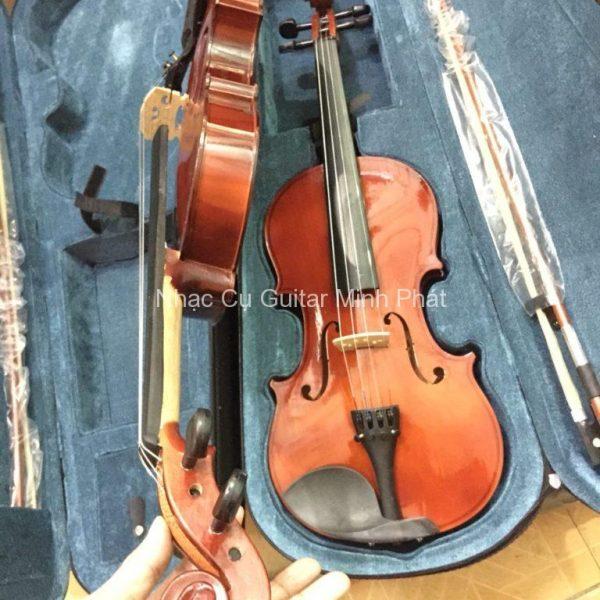 shop-ban-dan-violin-gia-re-quan-binh-tan-tphcm